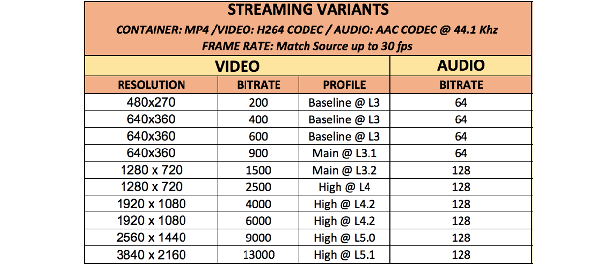 streaming variants video and audio